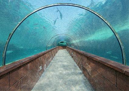 hotel-underwater.jpg