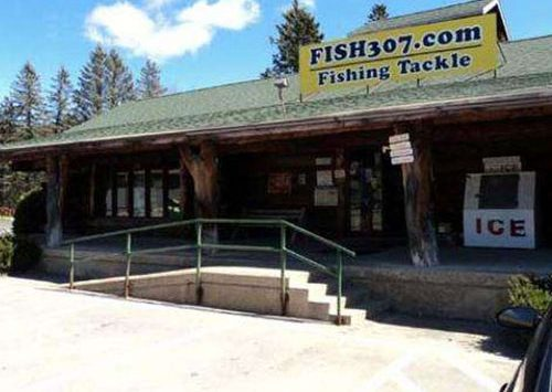 entrance of fish307.com