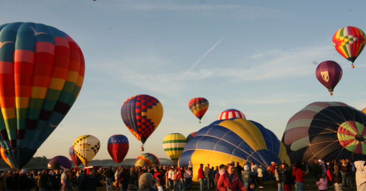 crowd of people at a balloon festival