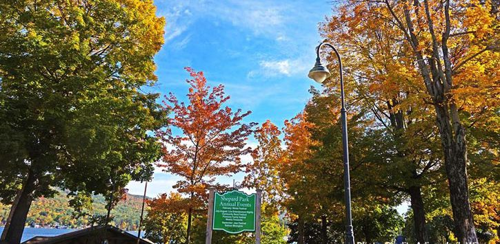 shepard park fall foliage