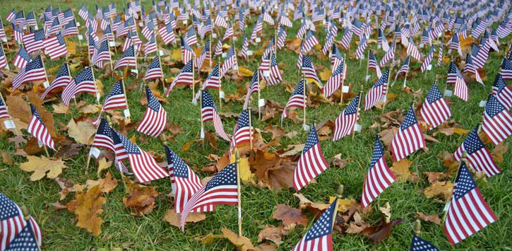 field of flags on a lawn
