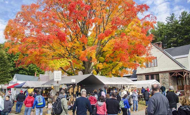 fall foliage at the garage sale