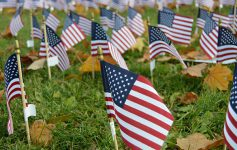 a field of small american flags