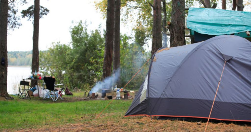 tent and campsite near trees