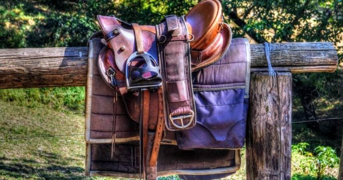 saddle on fence