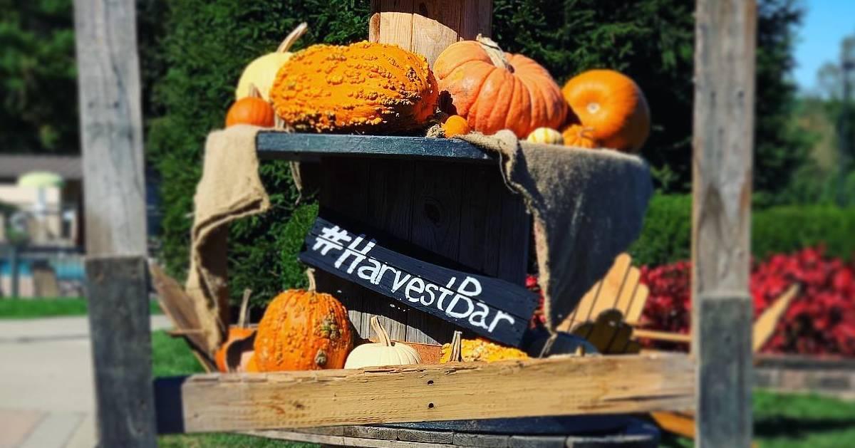 Harvest Bar decorations