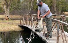 man dumps trout in river