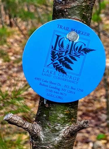 blue trailmarker