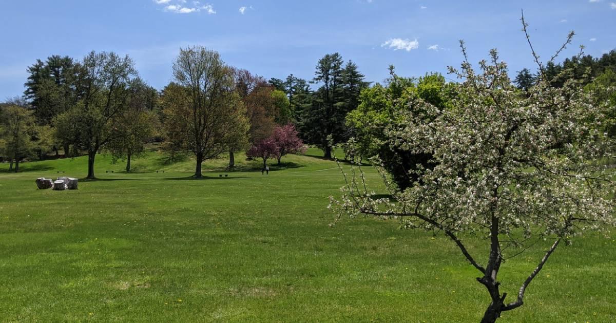battlefield park