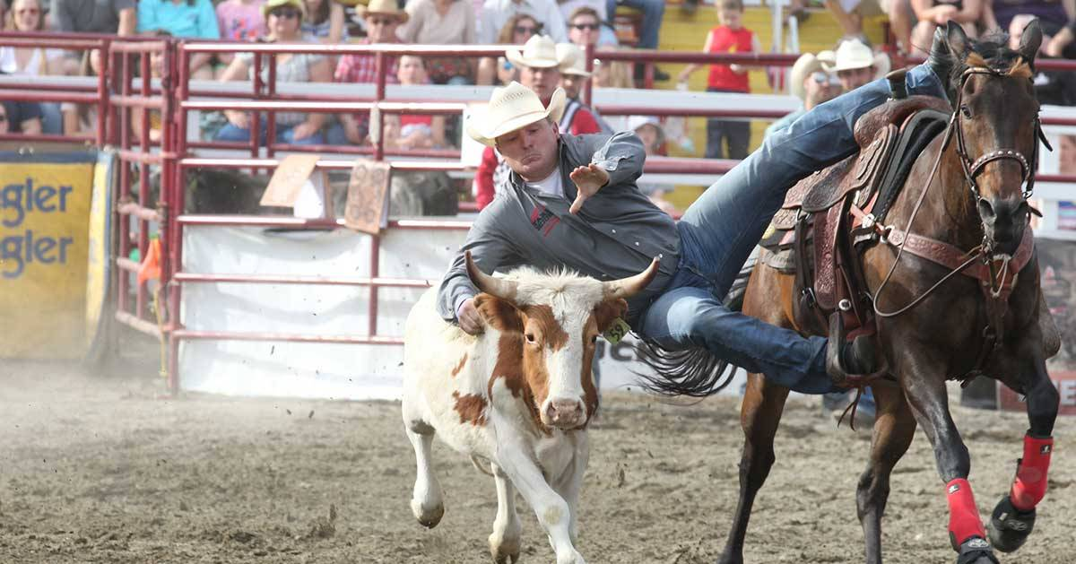 rodeo in action