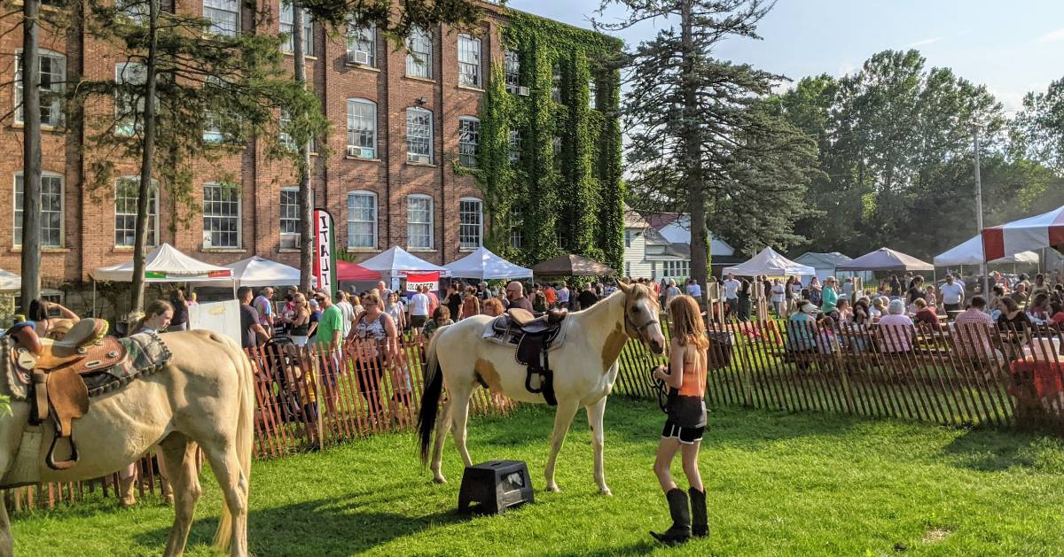 event going on, girl with a horse